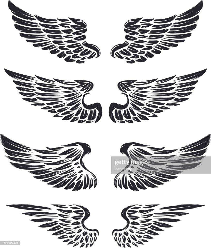 Set of vintage vector wings isolated on white background.