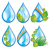 Set of water drops with leaves