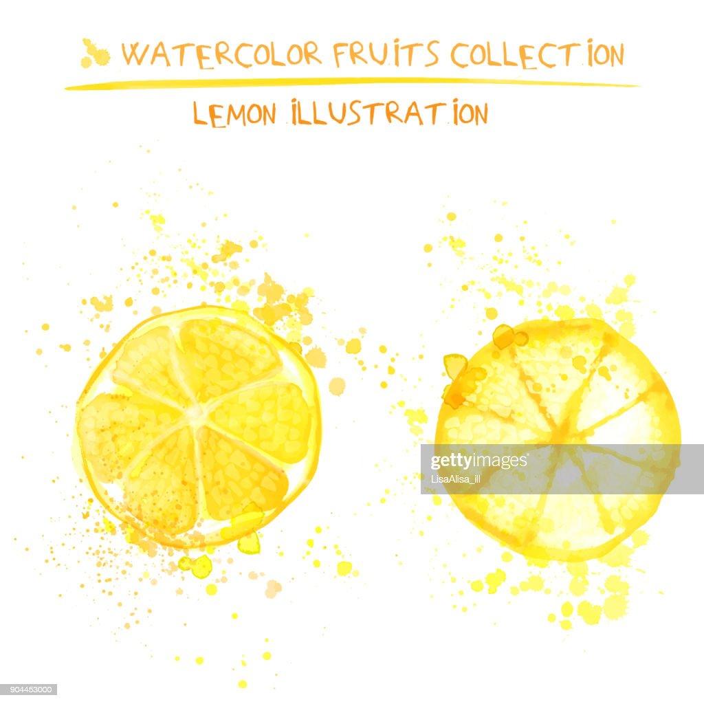 Set of watercolor lemon vector illustration. Splashed hand draw lemons isolated on white background, art vector citrus objects. Lemonade element
