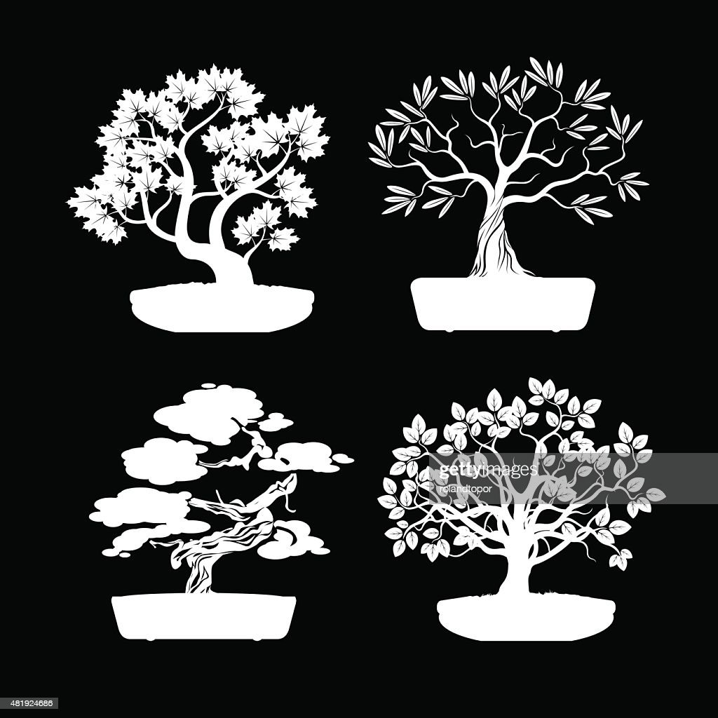 Set of White Bonsai Trees.