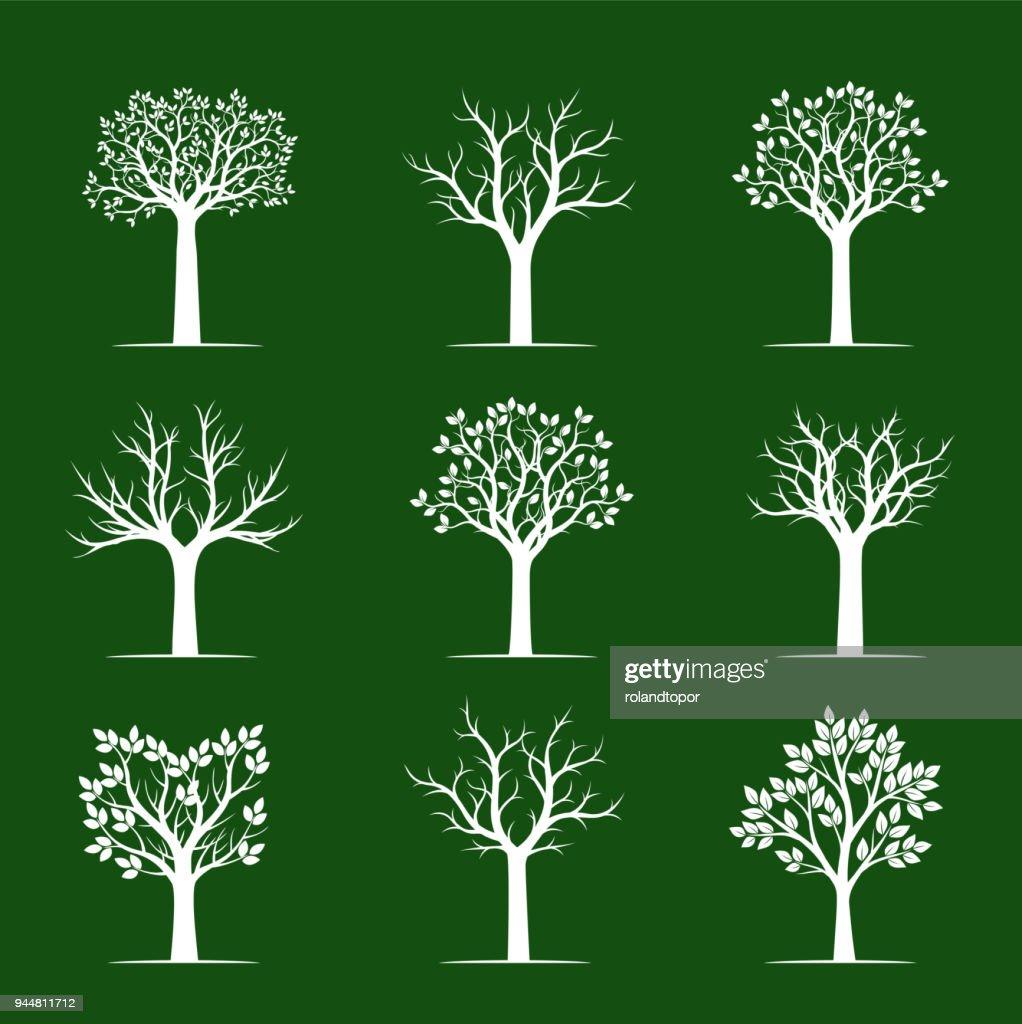 Set of white Trees on green background. Vector Illustration.