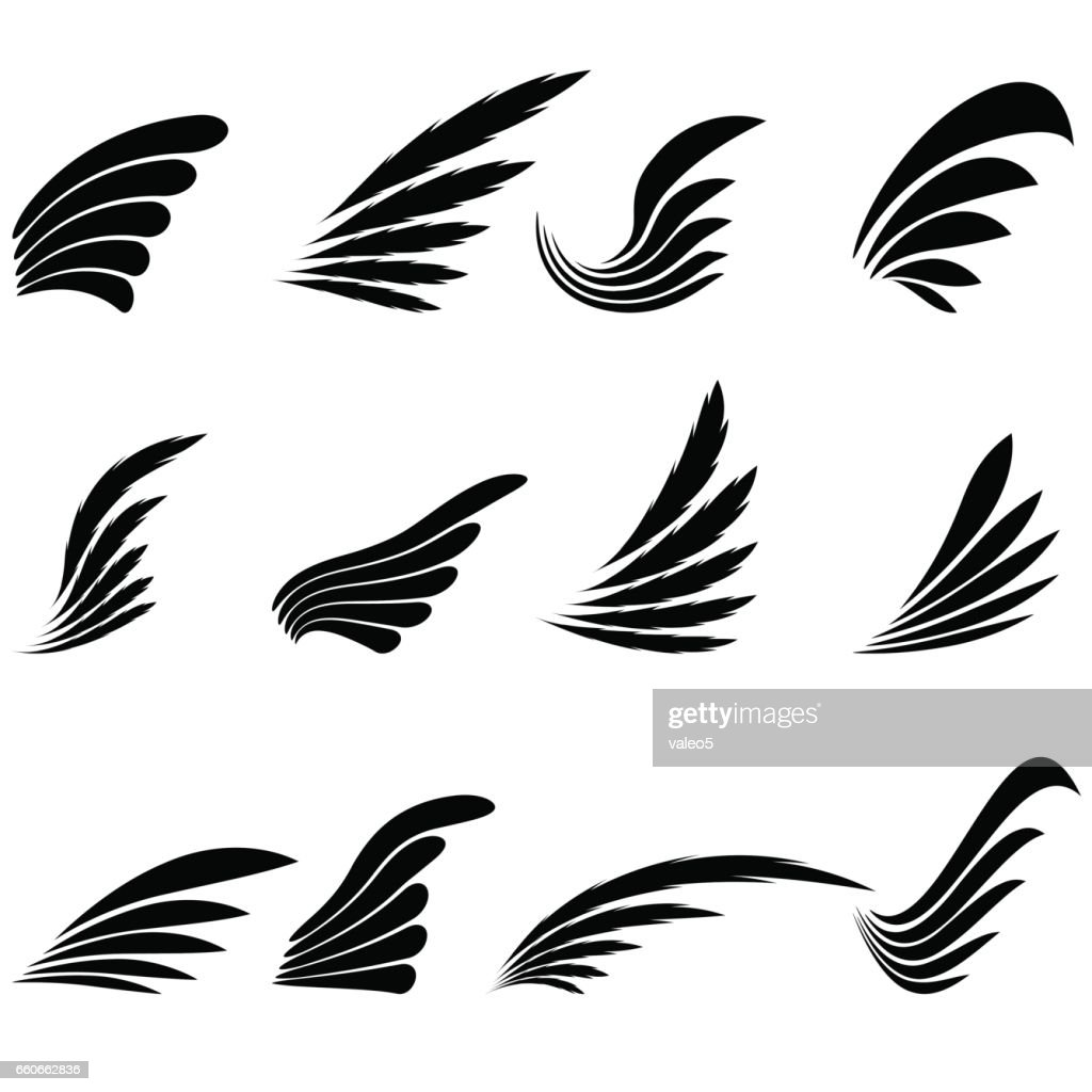 Set of Wings Icons Isolated on White Background