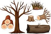 A Set of Wood