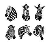Set of zebras head. Savannah animal ornament.