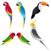set parrot 2