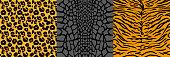 Set pattern with wild animal skins