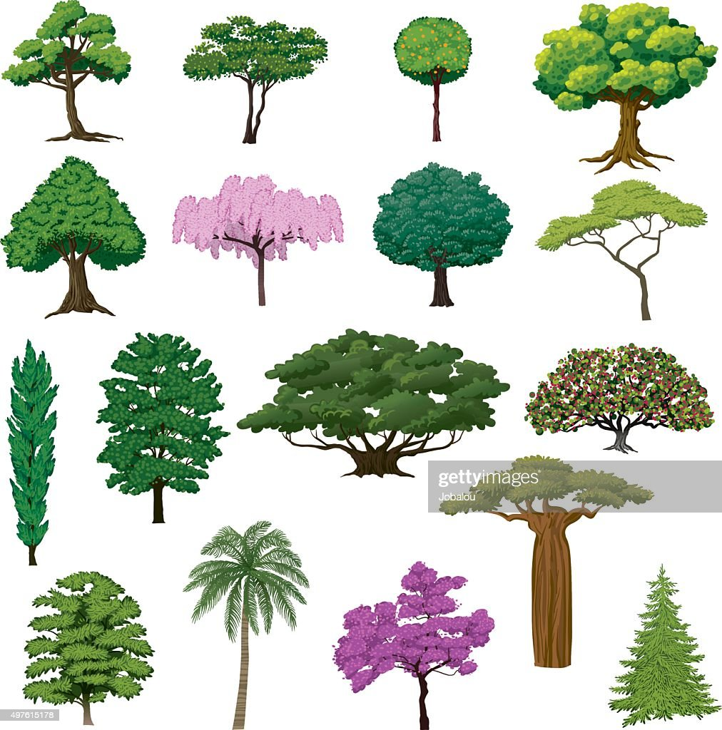 Set Sightly Trees : stock illustration