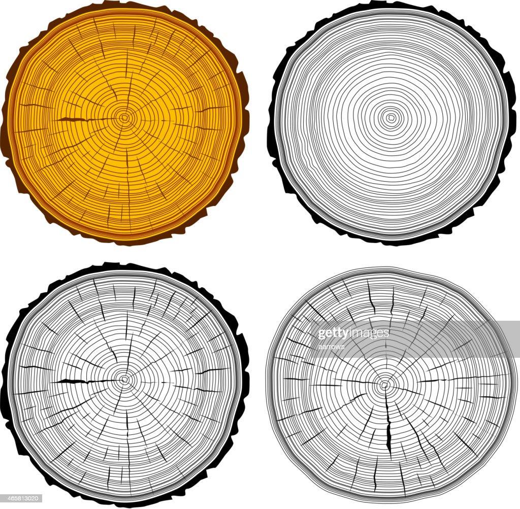 Set tree rings saw cut tree trunk background.