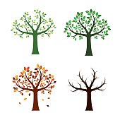 Set Trees and For Seasons. Vector Illustration.