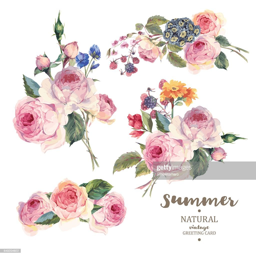 Set vintage floral vector bouquet of English roses
