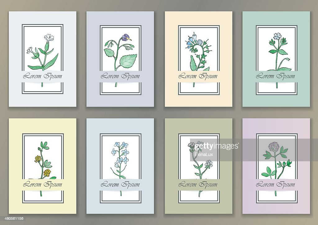 Set Vintage Posters with hand drawn watercolor herbs : Vector Art