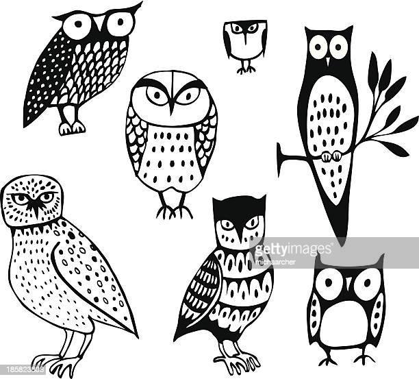 illustrations, cliparts, dessins animés et icônes de sept owls - chouette