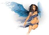 sexual angel vector illustration