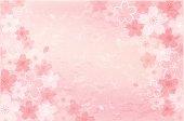 Shabby chic Cherry blossom background