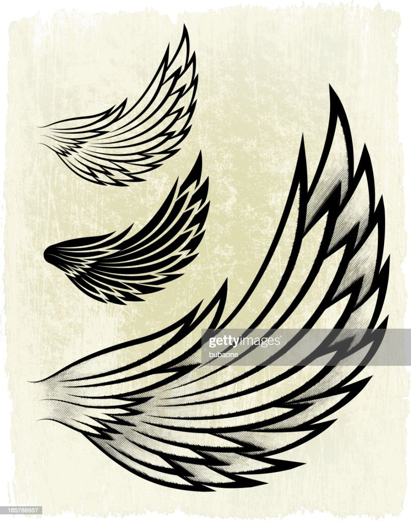Shaded Wing on royalty free vector Background