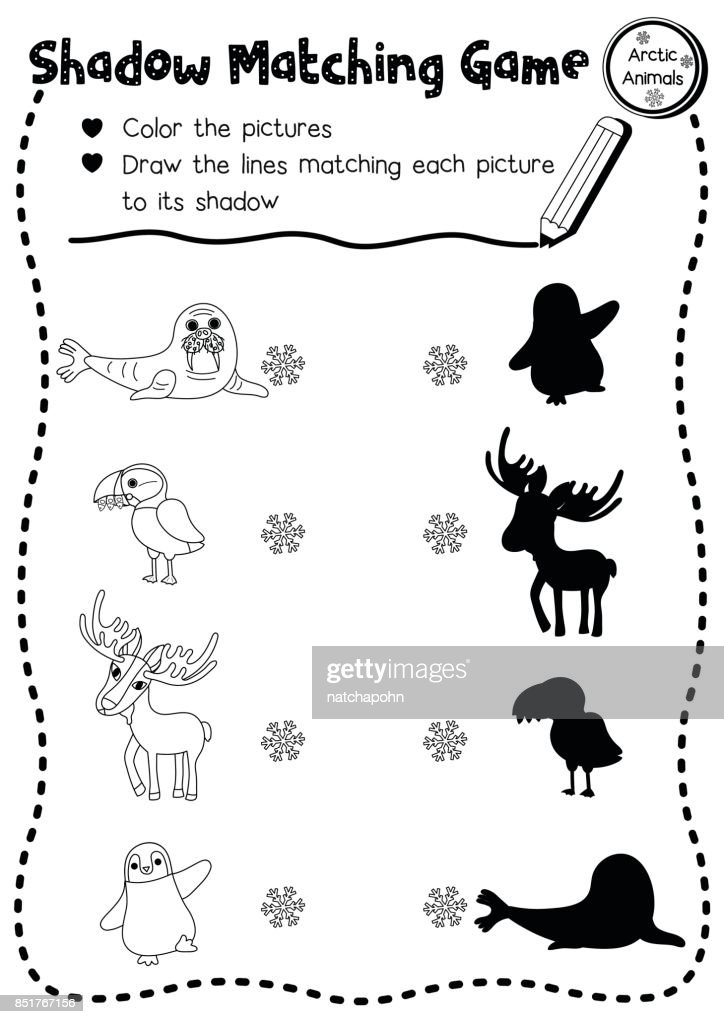 Shadow matching game arctic animal coloring page version