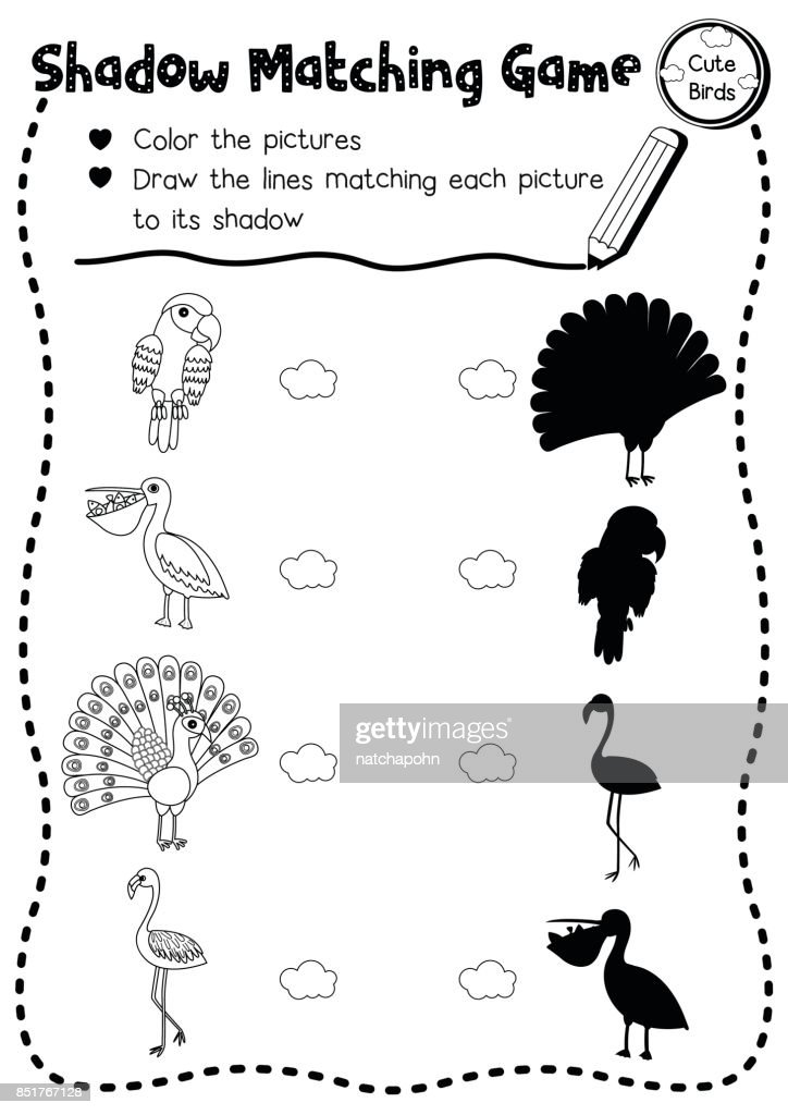 Shadow matching game bird animal coloring page version