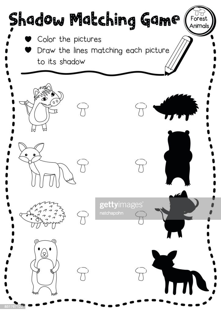 Shadow matching game forest animal coloring page version