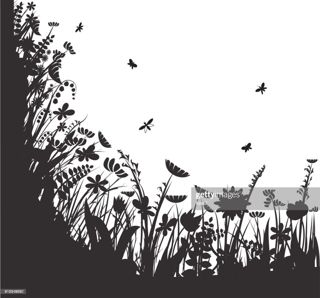 shadows flowers, summer round, vector, black and white,