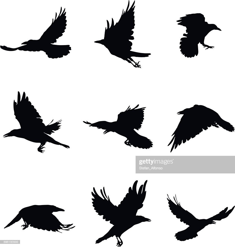Shapes of flying crows