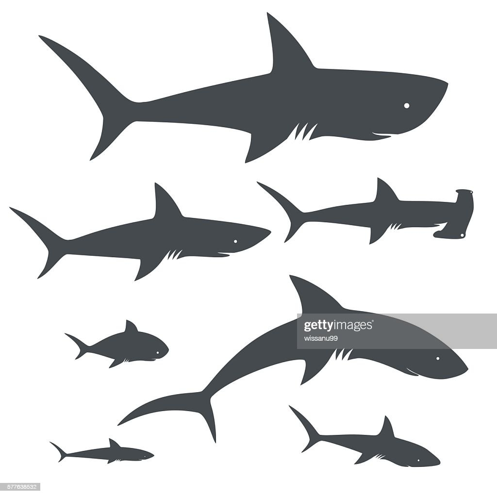Shark fish. sea life. icons collection. vector illustration
