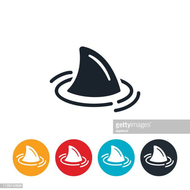 shark icon - sharks stock illustrations