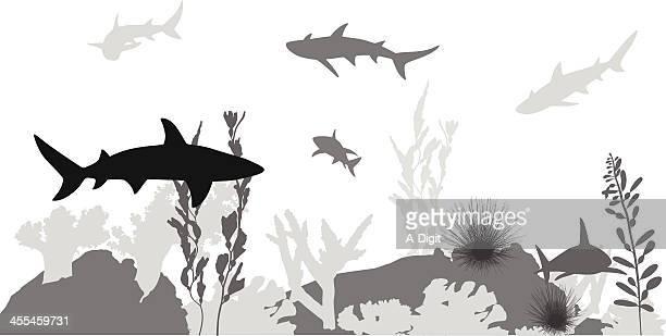 shark infested vector silhouette - infestation stock illustrations, clip art, cartoons, & icons