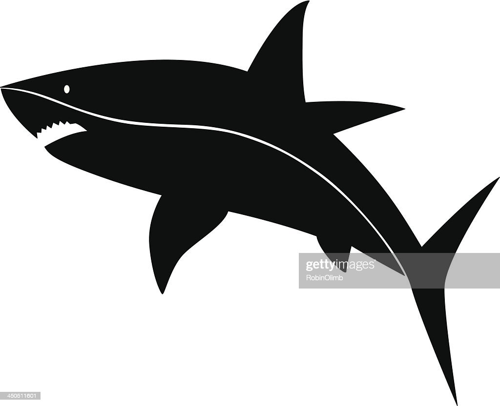 Shark Silhouette High Res Vector Graphic Getty Images Select from premium shark silhouette of the highest quality. https www gettyimages com detail illustration shark silhouette royalty free illustration 450511601