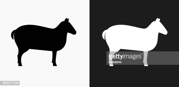 sheep icon on black and white vector backgrounds - sheep stock illustrations, clip art, cartoons, & icons