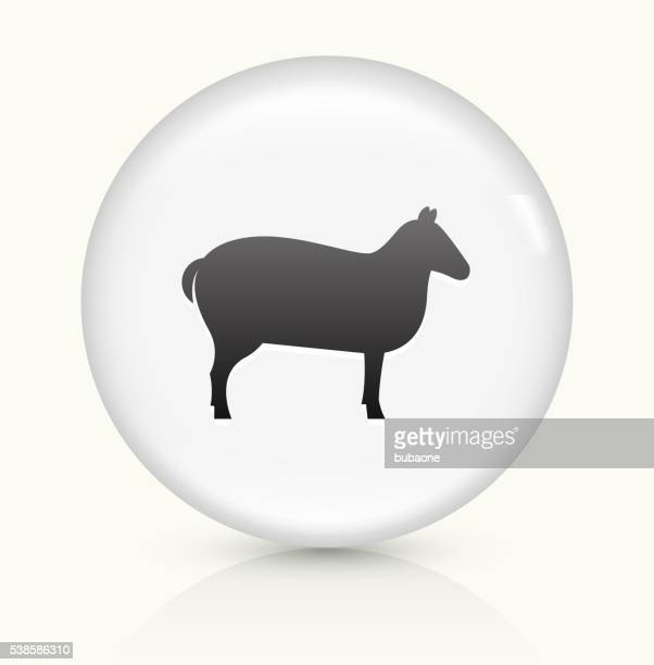 Sheep icon on white round vector button