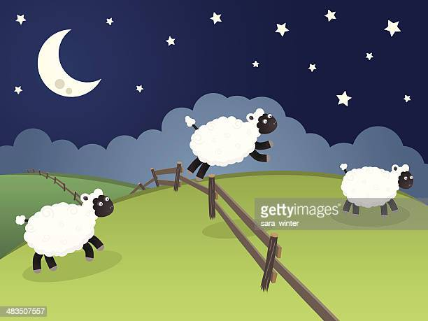 sheep jumping over a fence in a rolling night landscape - sheep stock illustrations, clip art, cartoons, & icons