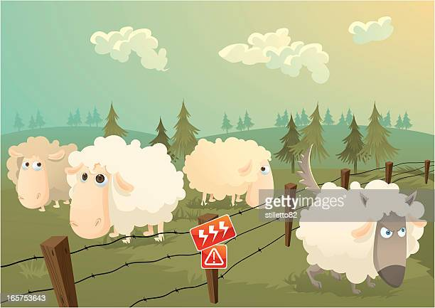 sheeps in danger - sheep stock illustrations, clip art, cartoons, & icons