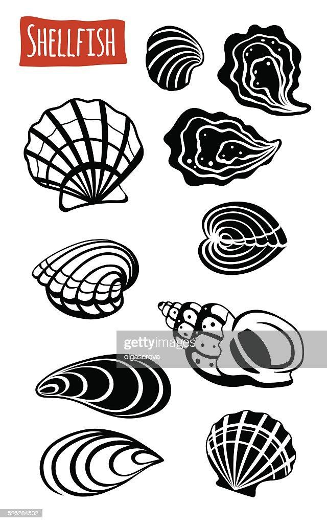 Shellfish, vector cartoon illustration