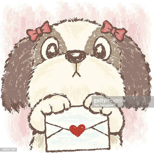 Shih Tzu and Love letter