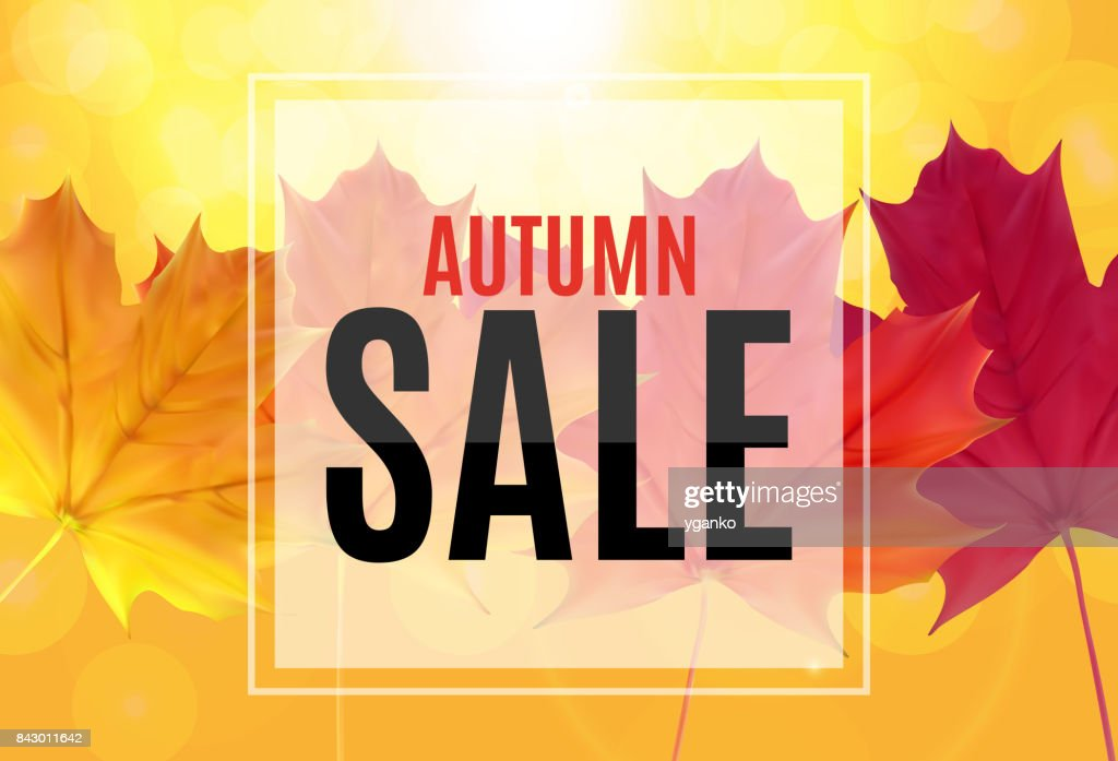 Shiny Autumn Leaves Sale Banner Business Discount Card Vector ...