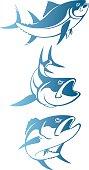 Shown tuna logo