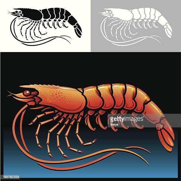 ilustrações, clipart, desenhos animados e ícones de conjunto de ícones de camarão - camarões
