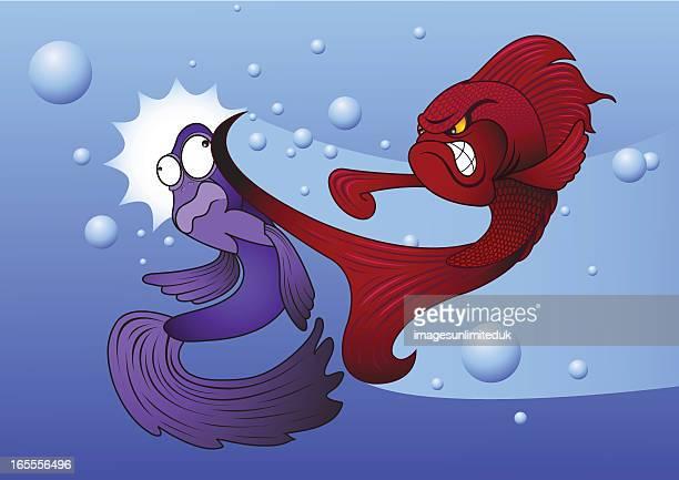 siamese fighting fish - slapping stock illustrations, clip art, cartoons, & icons