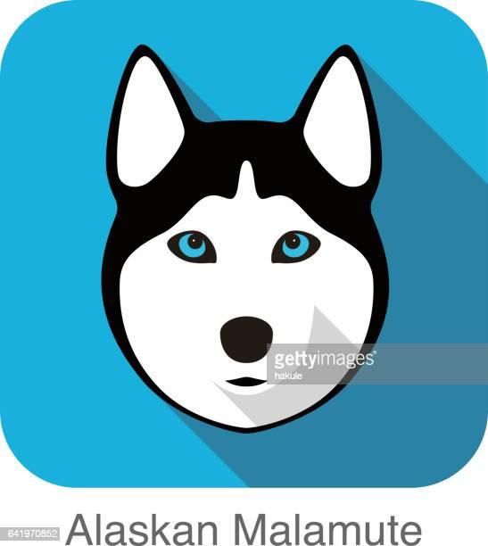 Siberian Husky Gesicht, Alaskan Malamute, Vektor illustrator