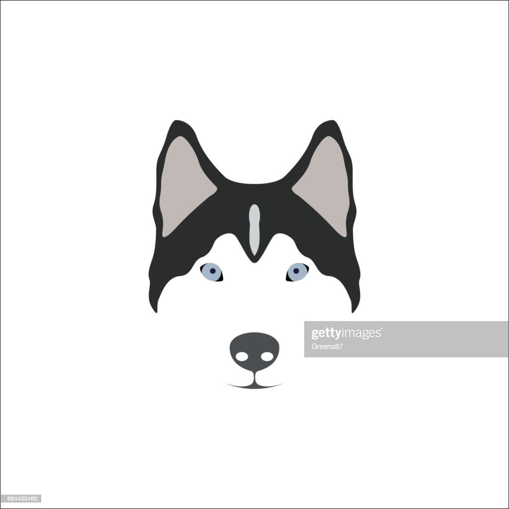 Siberian Husky head. Vector illustration.