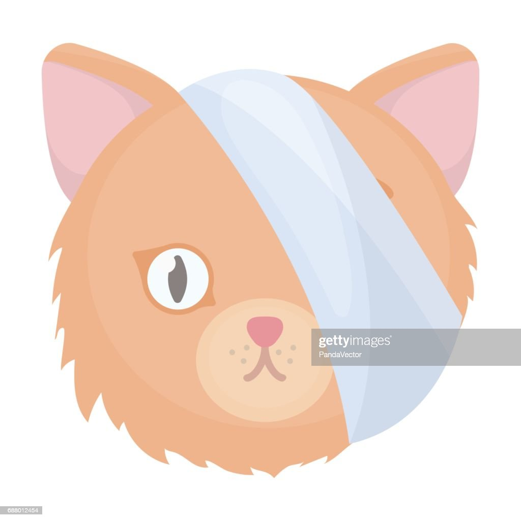 Sick cat with bandage on a head icon in cartoon style isolated on white background. Veterinary clinic symbol stock vector illustration.