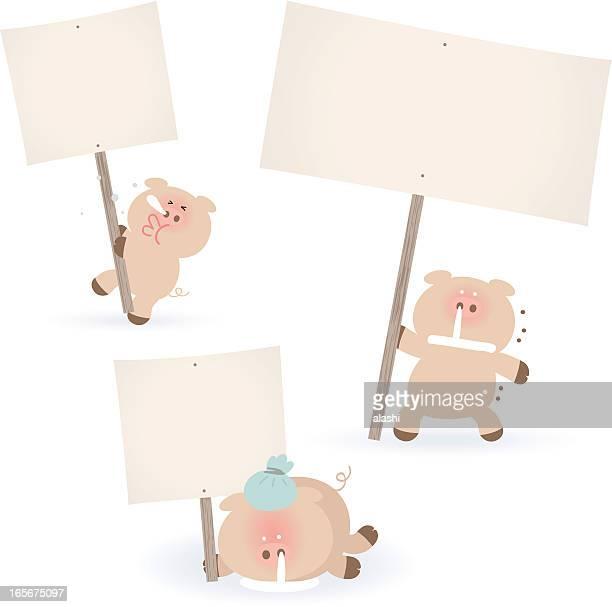 krank schweine hält eine leere schild für ihre nachricht. - blowing nose stock-grafiken, -clipart, -cartoons und -symbole