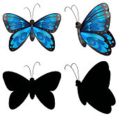 Silhouette butterfly in two positions