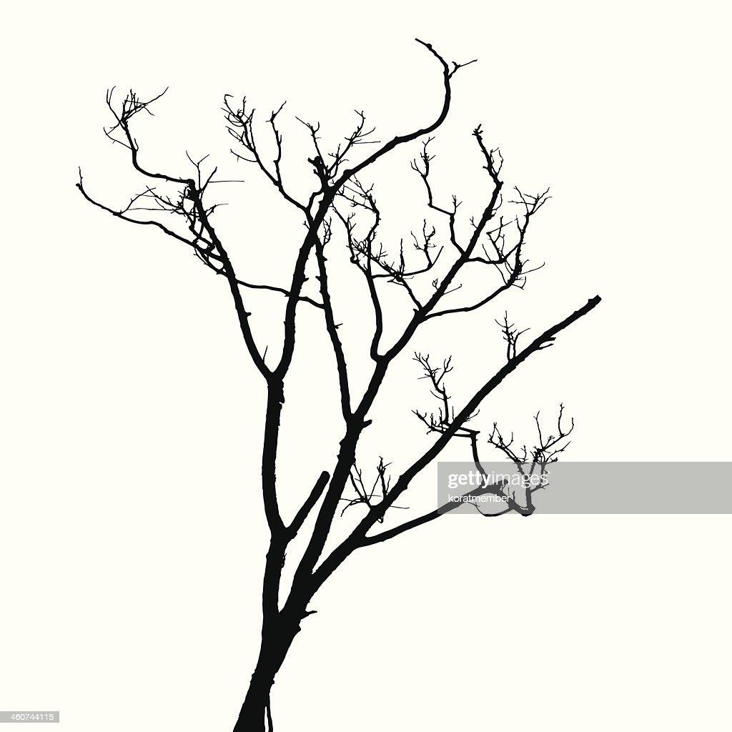 Silhouette Dead Wood