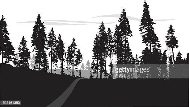 silhouette forest trail - treelined stock illustrations, clip art, cartoons, & icons
