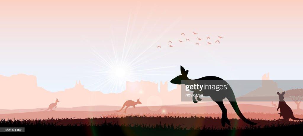 Silhouette kangaroo in the evening