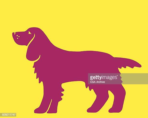 bildbanksillustrationer, clip art samt tecknat material och ikoner med silhouette of a dog - best in show