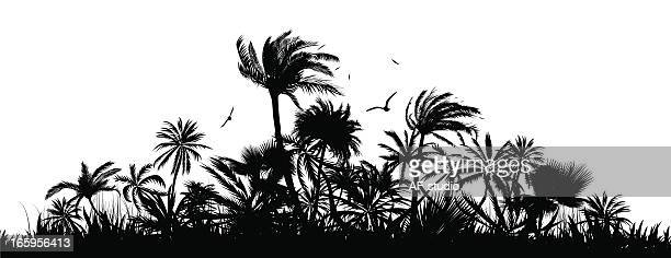a silhouette of a group of palm trees and birds - coconut leaf stock illustrations, clip art, cartoons, & icons