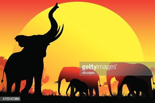 silhouette of an african elephant family on a hot safari say vector art getty images