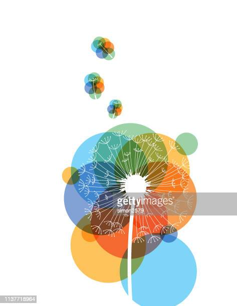 silhouette of dandelion in colorful background - seed stock illustrations